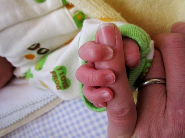 孫の手.JPG