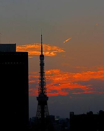 東京タワー12.JPG